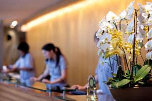 Accompagnement personnalisé pour 12 hôtels de la Nièvre